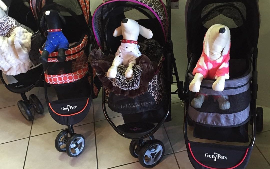 "Ive never been to a doggie luxury boutique that had some many dog carriages. As my mother would say ""dogs in American are treated better than the people in China."" #dogcarriage #dog"