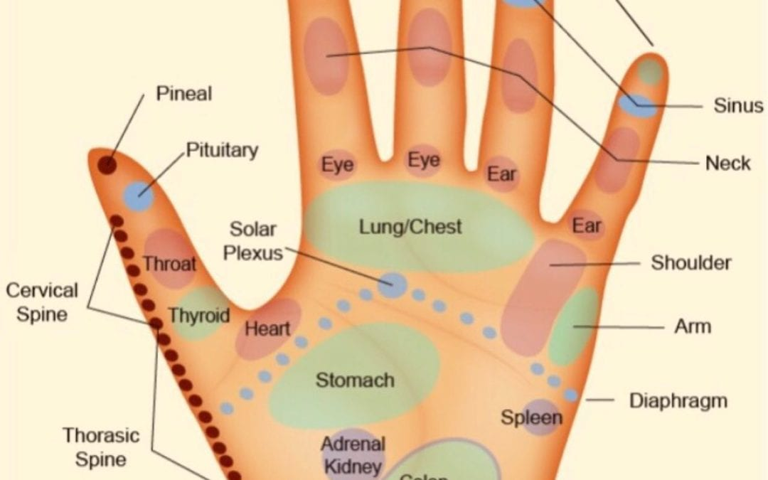 Fall allergies beginning? Try this hand reflexology tip for sinus relief and drainage. Reflexology supports body functions. https://youtu.be/asIHaO8dwDQ Looking for self care reflexology courses you can learn from home? Courses.healingplaceenergyschool.com #wellness #selfcare #holistichealth #nomedication #energyhealing #reflexology #sinusrelief #body #healingplaceenergyschool #healingplacemedfield